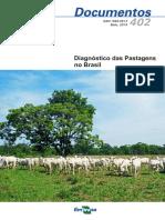 pastagens plantadas.pdf