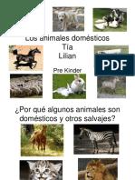 losanimalesdomsticos-100910231939-phpapp02
