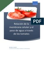 Relación de La Membrana Celular y El Paso Del Agua a Través Del Tomate
