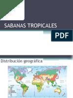 Sabana Tropical