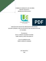 Revisión Literaria-impacto Psicosocial Del Maltrato Infantil en Colombia (1)