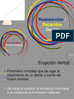 189780702-Rizolisis-Dental-2.ppt