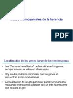 Clase 19 - Bases Cromosomales de La Herencia