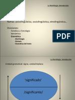1.1. Morfología Introducción