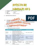 PROYECTO 5 DESASTRES