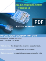 expocision OSPF