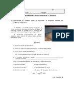 16-01-07 Ficha de Consolidacao - Atmosfera