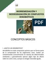 Ok (10) Biorremediación-xenob