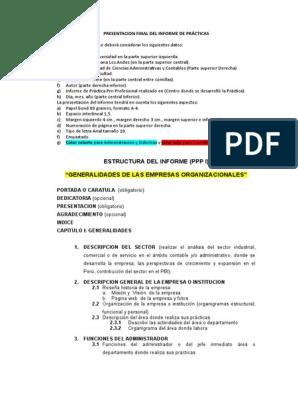 Estructura Del Informe Ppp I Contabilidad Business