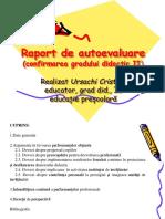 Raport Atestare Cristina