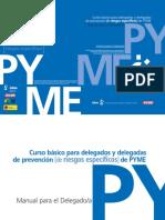 RiesEsp.pdf