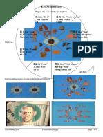 Eye-acupuncture.pdf