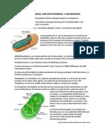 resumen biologia