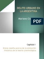 Delito Urbano en La Argentina-Ciafardini