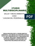 Salud y Medio Ambiente,  Caso Laguna de Pedernalillo por Jorge Nunez