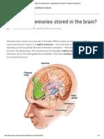 Where Are Memories Stored_ - Queensland Brain Institute - University of Queensland