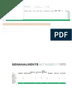Informe de Ventas h.service