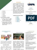 Brochure de Practica Docente III