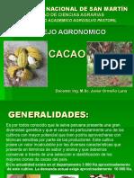 Exposicion de Cacao
