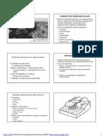 Sedimentologia - Aulas 29 a 32 - Sistemas Continentais