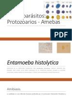 Enteroparásitos amebas.pdf