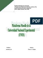 PLATAFORMA UNES.pdf