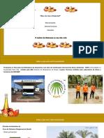 Apresentação óleo de palmiste
