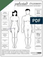 Cambios-físicos-y-emocionales-en-la-pubertad.pdf