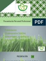 Francisco_Núñez Achurra_Control2.pptx