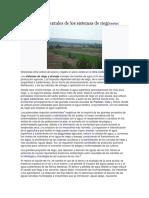 Impactos Ambientales de Los Sistemas de Riego