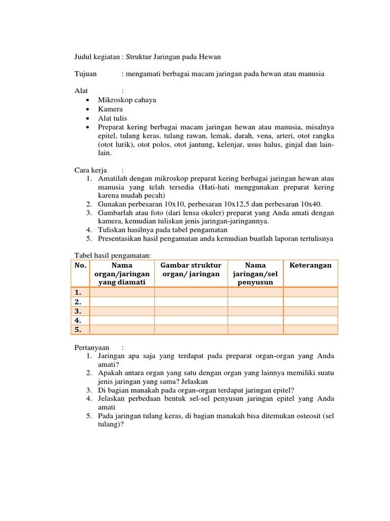 Lks Praktikum Jaringan Hewan Dari Buku