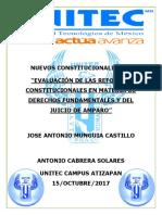 Nuevos Constitucionalismos PDF