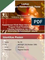 169313710-Lapkas-DHF