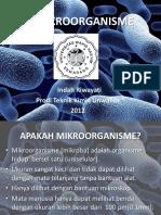 1.MIKROORGANISME