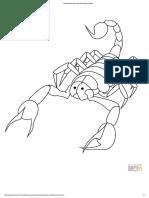Caricatura Escorpión de Frente - Super Coloring