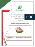 seminario 2018-3TM.pdf