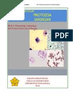335467_penuntun Praktikum Blok 6 PDF