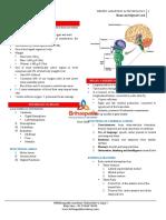 4.Central Nervous Systemfi