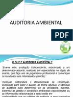 Auditoriaambiental 150312072542 Conversion Gate01