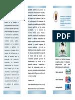 Educación Ambiental-folleto