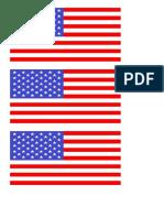 Yanitza Bandera EEUU