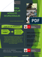 FORMULACIÓN DE MODULOS (1).pptx