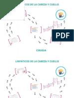 Linfaticos de La Cabeza y Cuello_opt