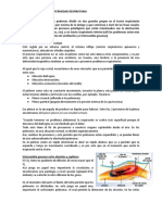 Fisiopatologia de La Enfermedad Respiratoria.docx