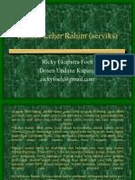 Kanker Leher Rahim (Serviks)
