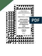 Manual Icap.pdf