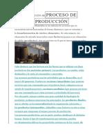 Proceso de Producción 10 Puntos