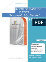 Manual SQL Server uni