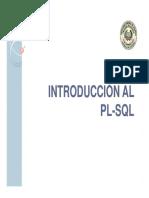 12 introduccion a plsql.pdf