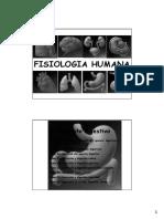 D22- Estructura Funcional Digestivo